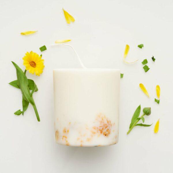 Kamellebuedchen Shop Deko und Heim Kerzen Munio Naturella Ringelblume